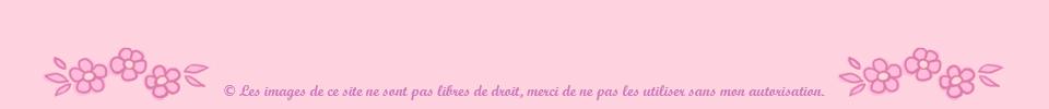 lesamandinettes.com